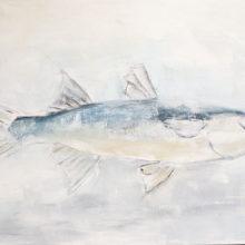 Blauwvis 75 x 115